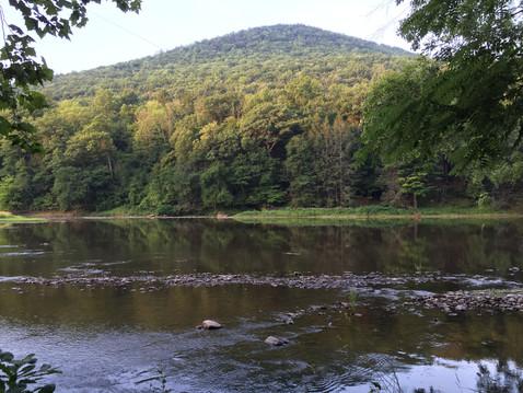 小屋の目の前に川✨