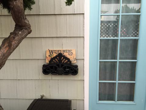 家の外にWild Flower(^^♪