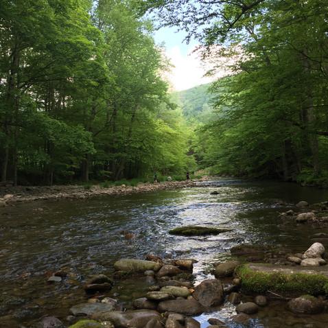 川のほとりでキャンプ。きもち~~~