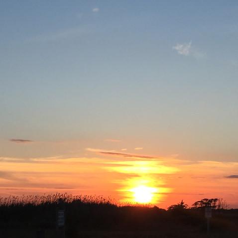夕陽がきれいでした
