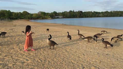 鳥にパンをあげていたおばさんがパンをくれました