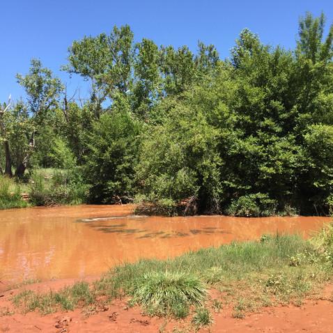 あれ、昨夜の雷雨で川が濁ってる!