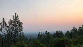 山火事シーズン到来 in 北カリフォルニア