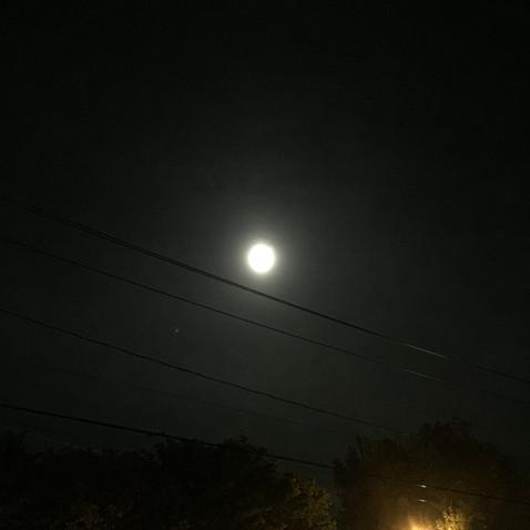 その夜は満月でした。