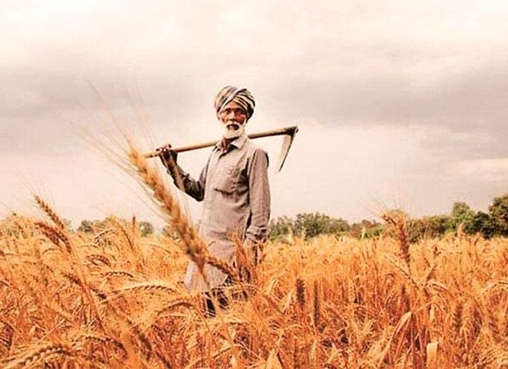 farmers-small-express_edited.jpg