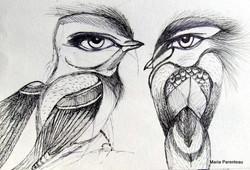 cal illusion, vision illusion, optic