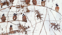 The Winter Sparrows and the Japanese Ladies. The Story