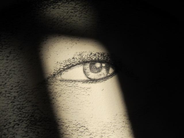 Maria Parenteau's Optical Illusion Phase