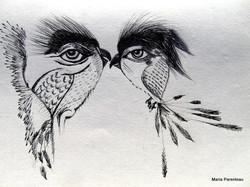 cal illusion, vision illusion, _0151