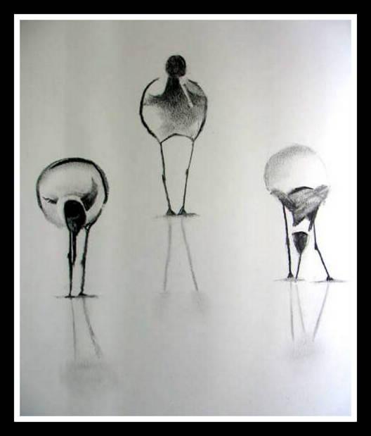 Maria Parenteau's Black and White Phase