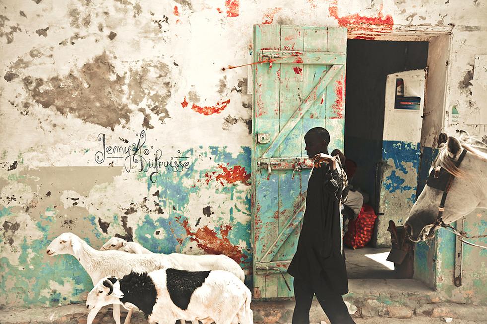 Les rues de Saint-Louis, Sénégal