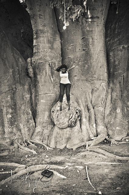 Baobab de Joal-Fadiouth, Sénégal