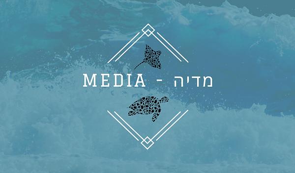 חשיבות מדיה - media.png