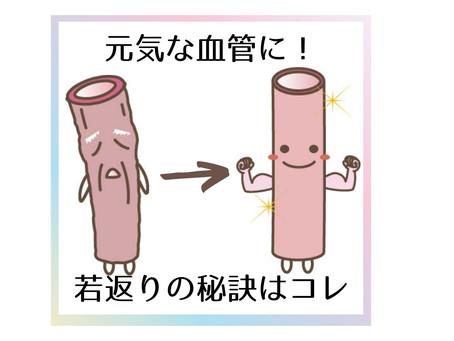 年齢と共に血管も老いる!?😨