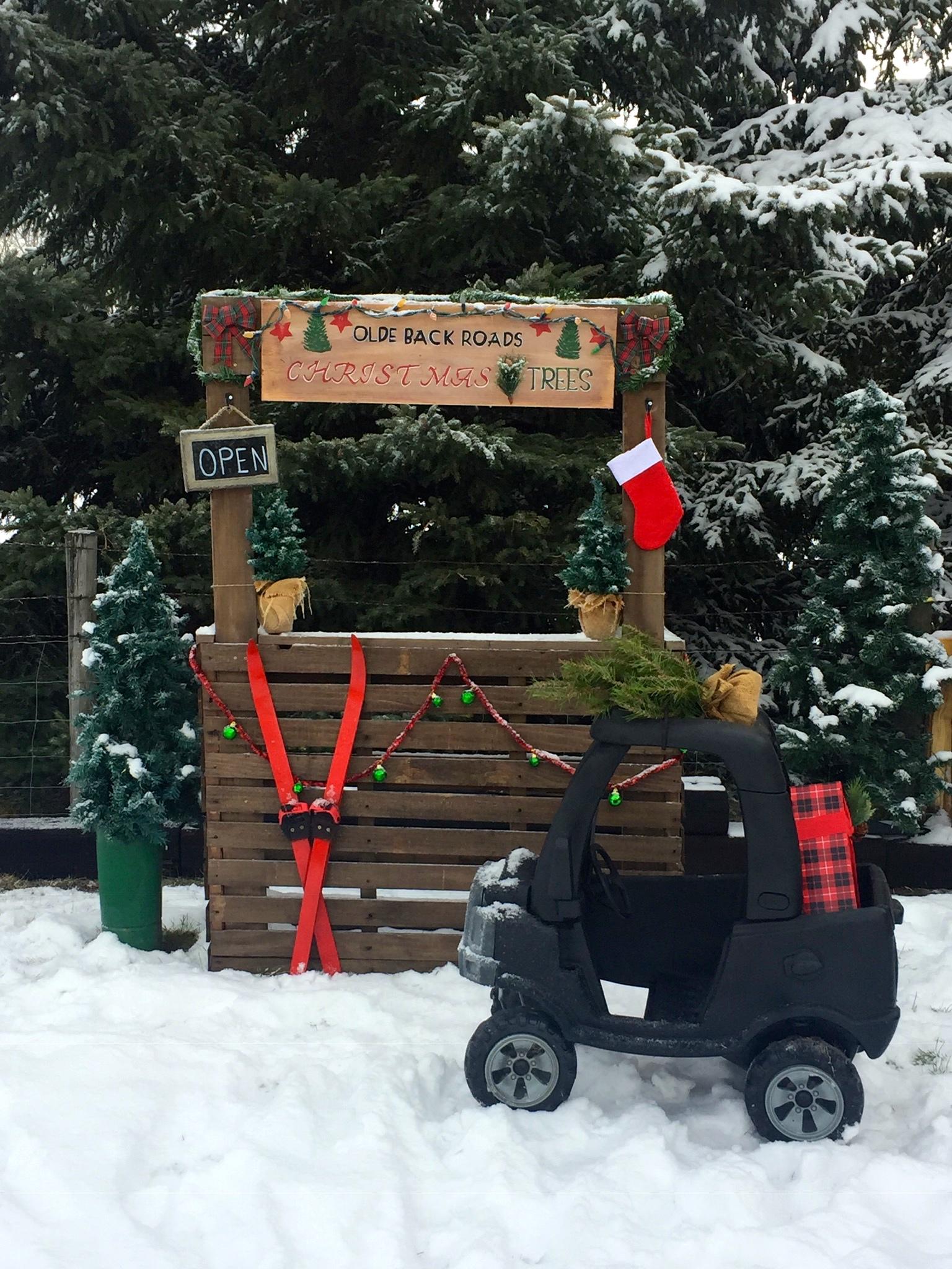 Christmas Tree Booth
