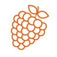 Icon_Beruf.png