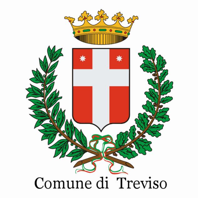 COMUNE DI TREVISO DEF.png