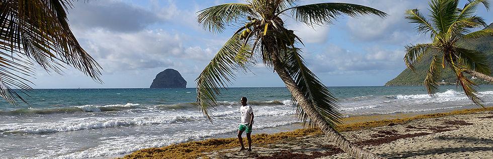 Martinique-site.jpg