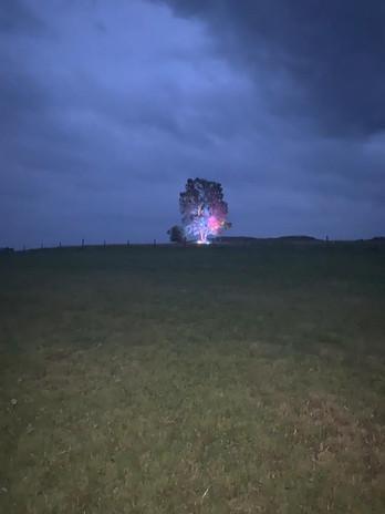 Beleuchtung Für Huntington 2020 Schwalmtal Alte Birke 3