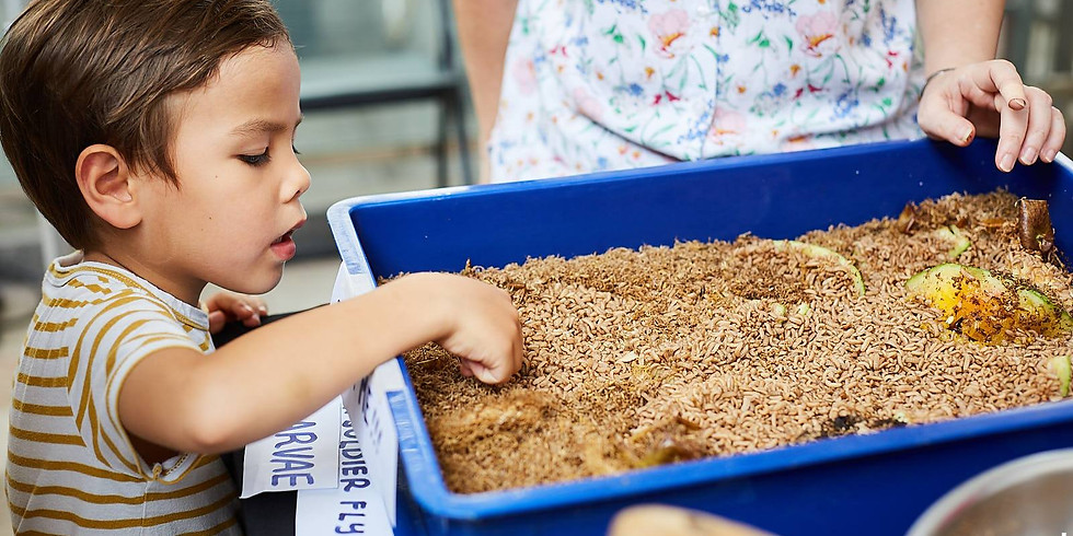 Of Insects and Rice: Food Waste Adventures for Little Learners! (18 Mar, Thursday, 9am) - [9 Slots Left]