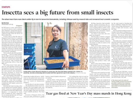 Insectta Aims to Lead in the Development of Insect-Derived Biomaterials - The Business Times, Singap