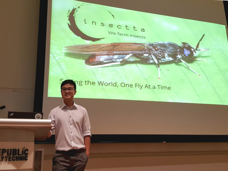 Insectta at Republic Polytechnic