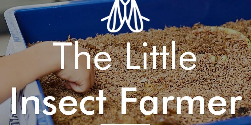 The Little Insect Farmer - Children's Seminar & Urban Farm Tour (15th Dec, 9:30am)
