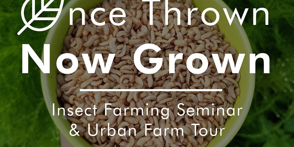 Once Thrown, Now Grown! Insect Farming Seminar + Urban Farm Tour (15th Dec)