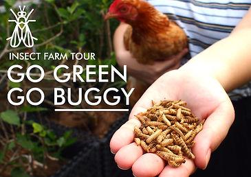 FARM TOUR SIGNAGE copy.jpg