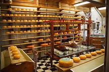 cheese-21824.jpg