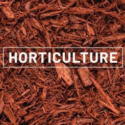 CHDS - Horticulture