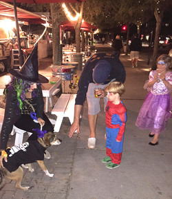 Animal Therapy working with boy afraid of dogs Halloween program