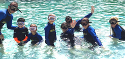 Little Star participants in the water with dolphins