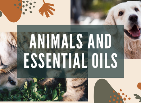 Animals and oils!