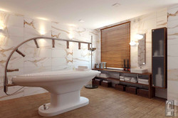 Массажный кабинет с душем Виши