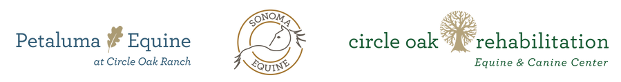 PE, SE, COR Logos Horz 2021.png