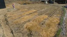 대천 콩나물 공장 툰드라 사용후기