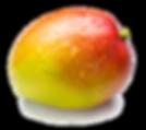 Mango-PNG-Pic.png