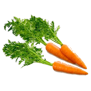 carrot_PNG4984.png