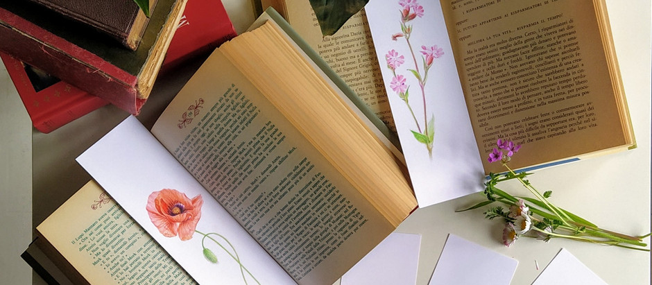 A Wild Flower as a Bookmark