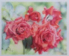 Crepuscolo sulle Rose