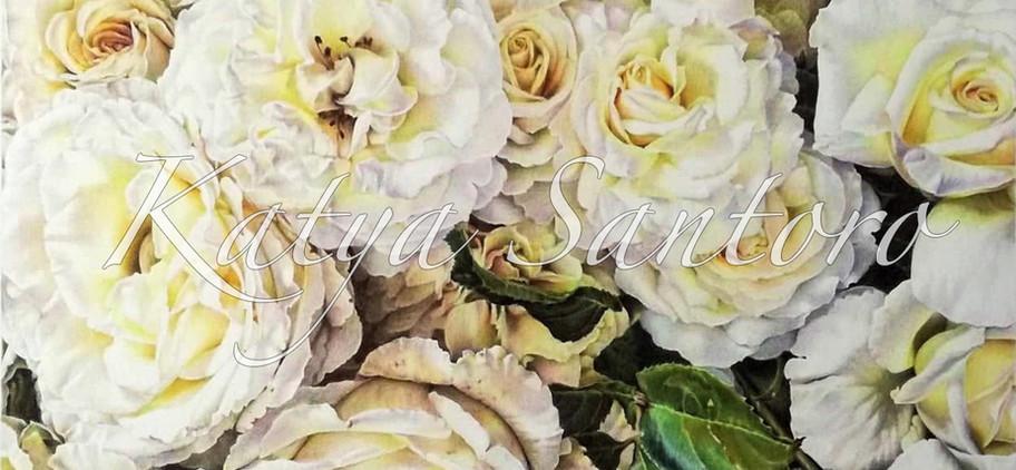 Disegni Di Fiori Arte Botanica Disegni A Pastello Matite Colorate
