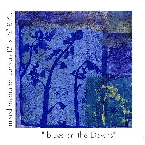 Blues on the Downs