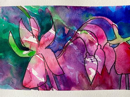 Fabulous Flamboyant Fuchsias