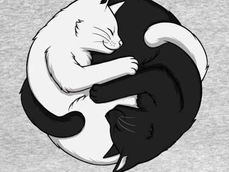 Notan Composition: Share YOUR Vision (and YinYang cats)