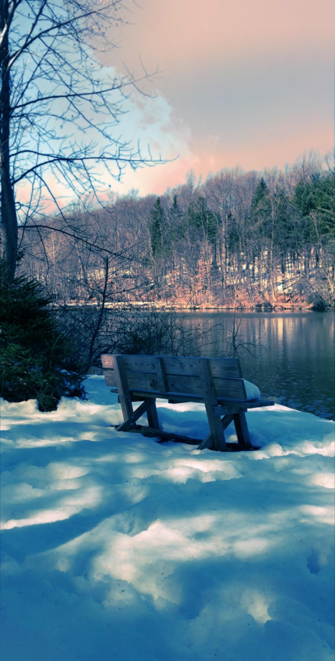 Greystone Woods Park