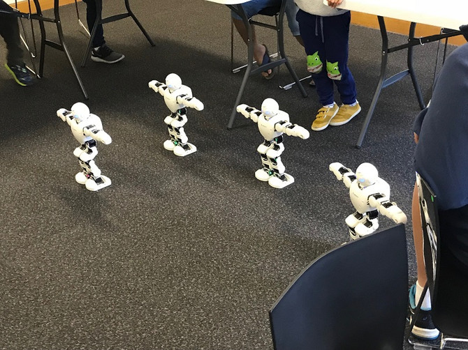 Humanoid Robot Programming