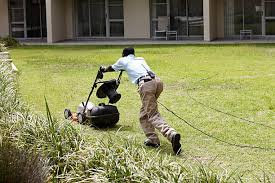 How to start a lawn care services