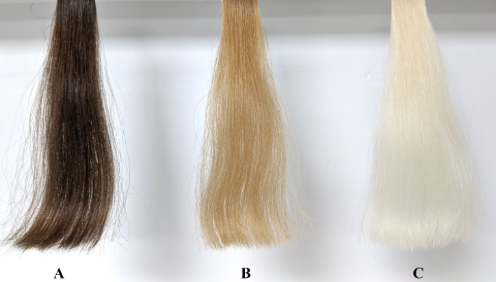 Figure 1. Medium brown virgin and bleached hair