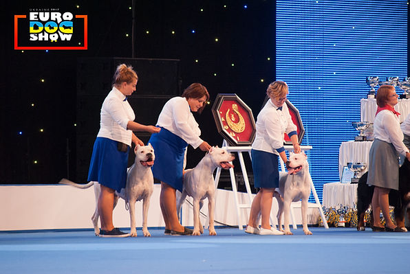 "Best dogo argentino kennel at the EDS 2017 - kennel ""Mary M.Style"""